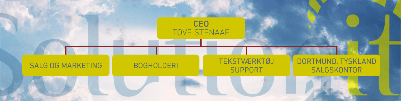 Vores IT konsulentfirma har en solid historik med Tove Stenaae som CEO